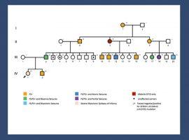 Les 10 choses sur le gène SCN1A que vous devez connaître en 2014