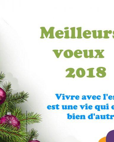 Meilleurs Voeux 2018
